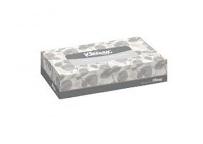 Pañuelo Facial Kleenex Regular 100 hojas